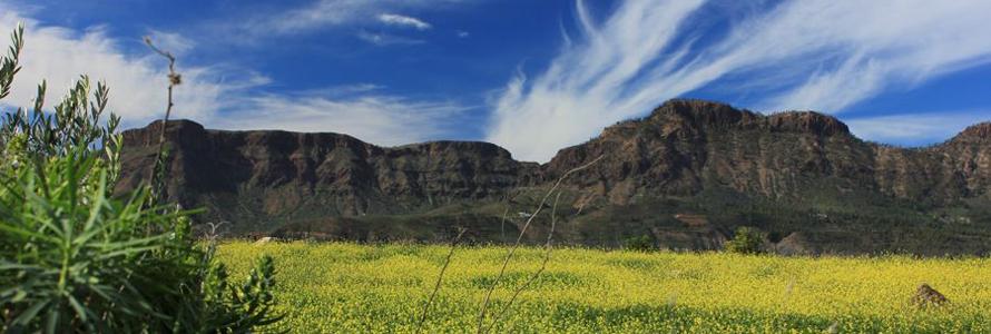 Aktivität Wandern auf Gran Canaria