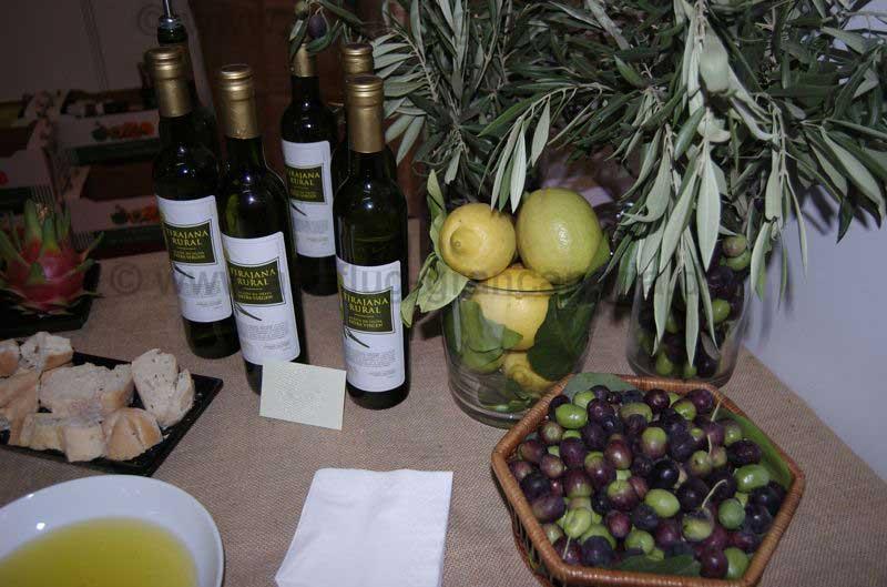 Probe Olivenöl aus Gran Canaria und Weissbrot