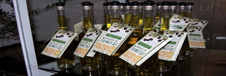 Das Olivenöl kann bei einem Ausflug probiert werden