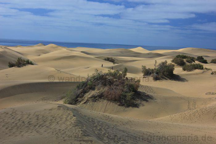 Ausflug bei einer Kreuzfahrt zu den Sanddühnen von Gran Canaria