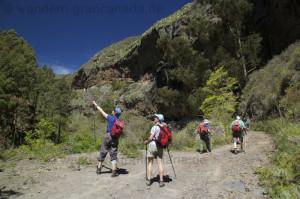 Wandergruppe auf einer Wanderreise im Norden von Gran Canaria