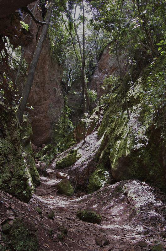 LandschaftNTerorOsor