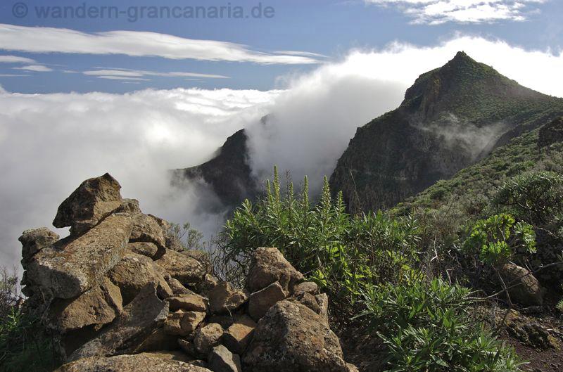LandschaftOBarrGuayadoben