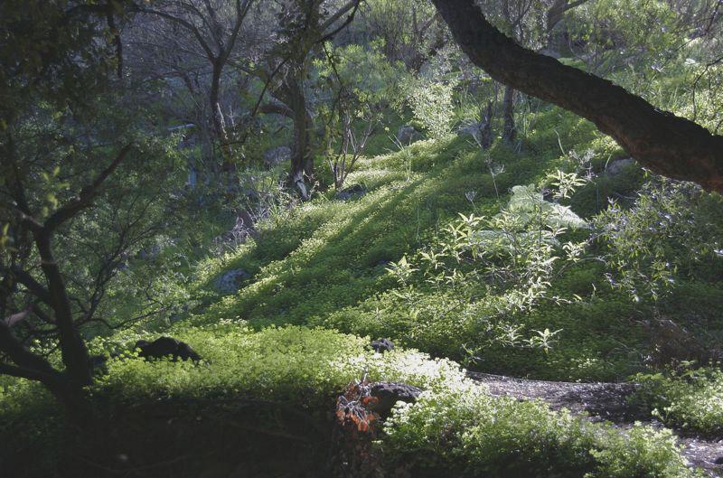 LandschaftOFalkenschlUnten