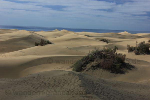 Sanddünen im Süden von Gran Canaria