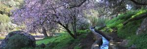 Wandern in der Falkenschlucht