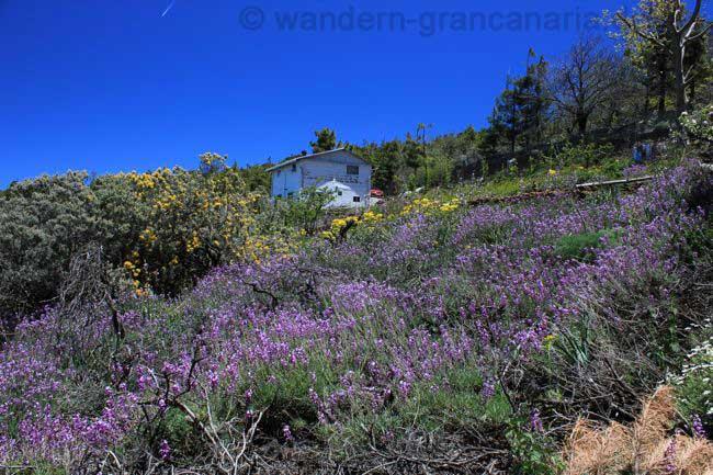 Lila Schöterich bei einer Wanderung auf Gran Canaria