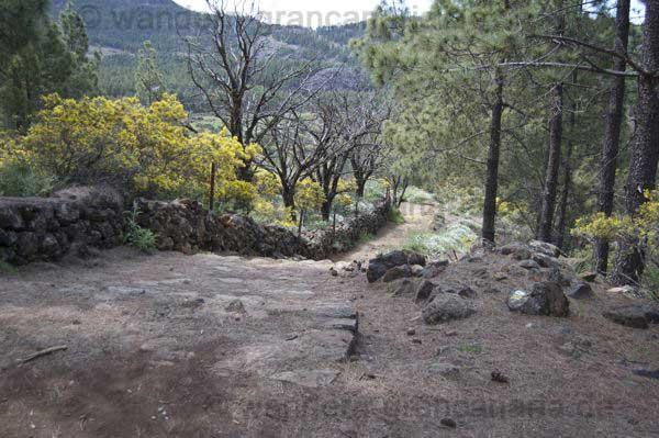 Gut ausgebauter Wanderweg auf Gran Canaria