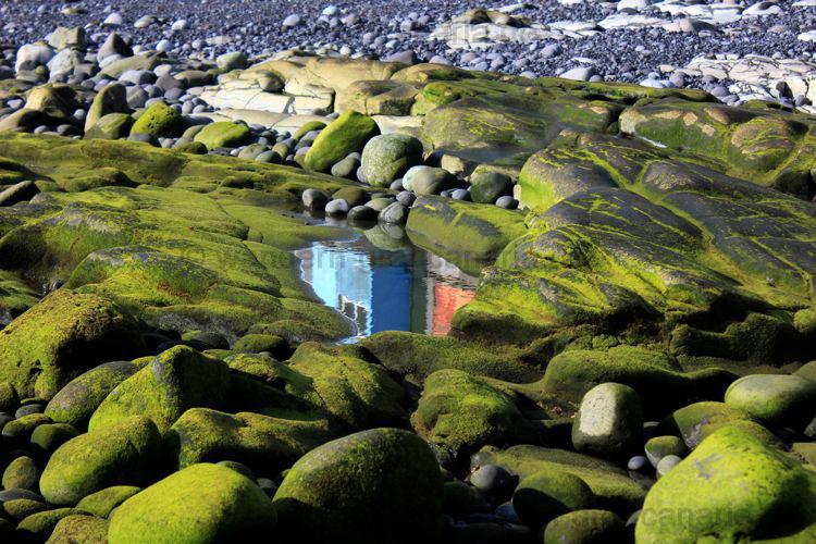 Pfütze mit Haus gespiegelt, Gran Canaria