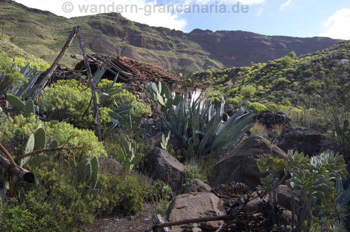 Old decayed farmhouse in the south east of Gran Canaria