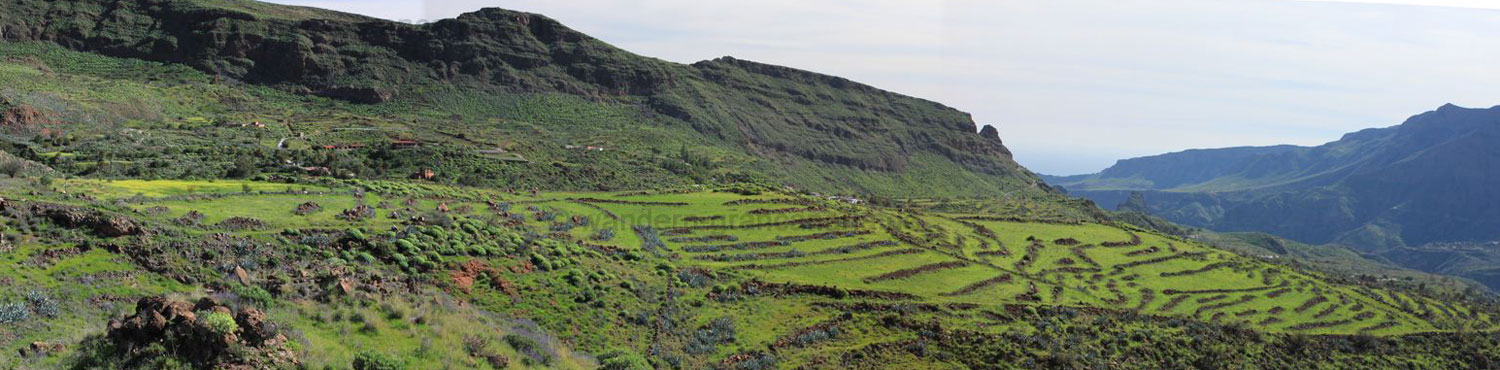 Panoramic photo of the terraced fields in winter in the southeast of Gran Canaria.