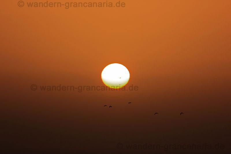 Sonnenfleck, Sonnenaufgang bei Hitzewelle auf Gran Canaria