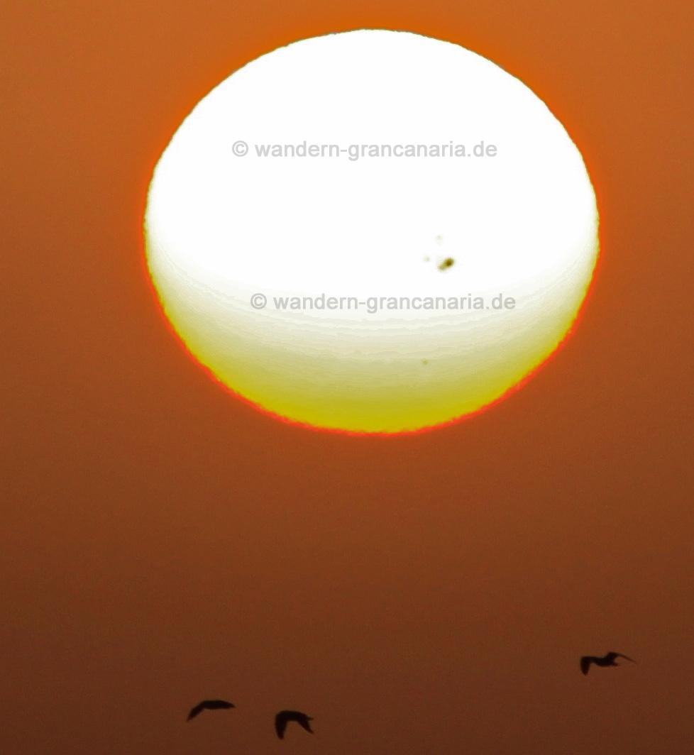Sonnenfleck vom 22.10.2014 auf Gran Canaria aufgenommen