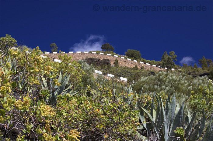 Strasse zum Aussichtspunkt vom Pico de Bandama