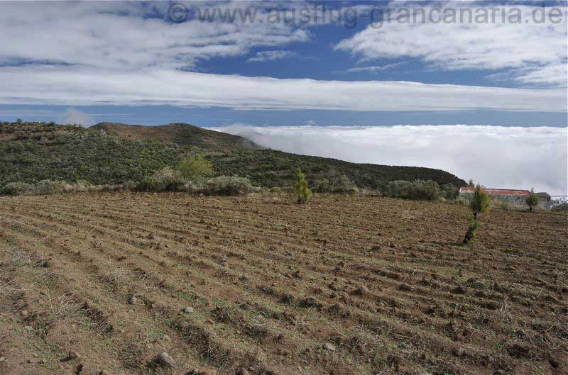 Ehemalige Felder im Südosten von Gran Canaria