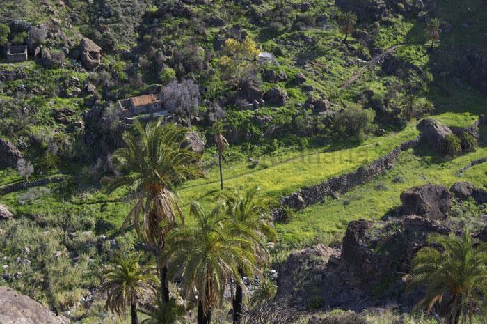 Verlassenen Häuser und Terrassenfelder auf Gran Canaria