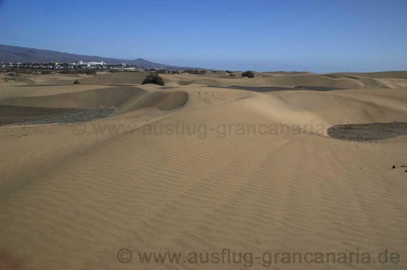 Dünen vom Maspalomas mit Blick auf Playa del Ingles
