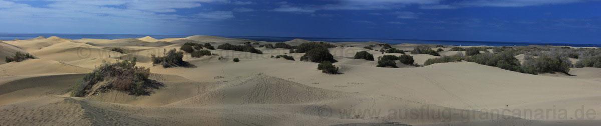 Sanddünen von Playa del Ingles