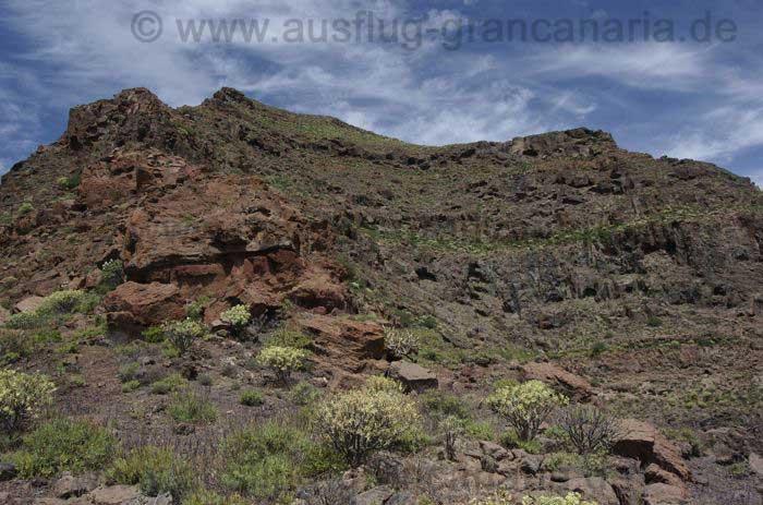 Schwierige Bergtour zum Horgazales, Gran Canaria