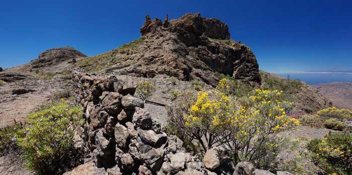 Steinmauer mit gelben Ginster, westliches Zentrum Gran Canaria