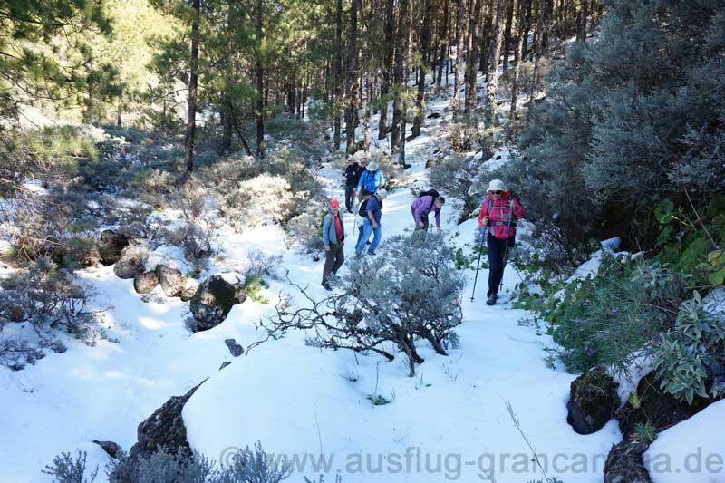 Schnee bedeckter Weg auf der Nordseite des Pico de las Nieves.