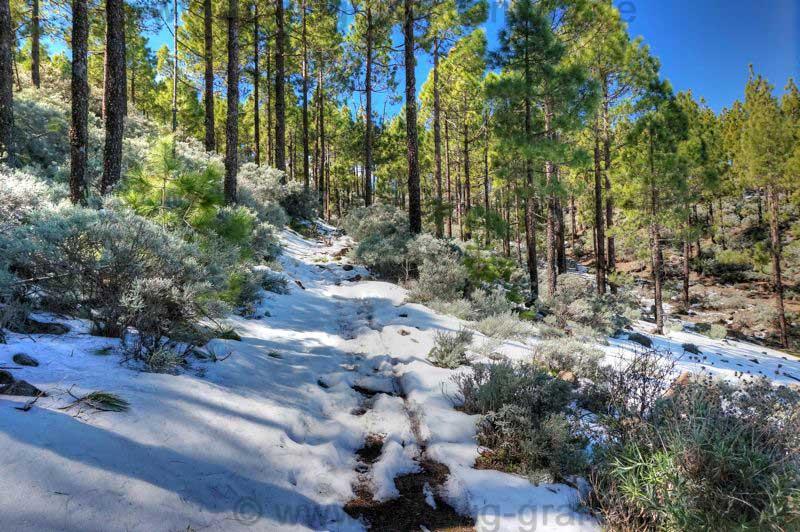 Schnee bedeckter Weg beim Wandern auf Gran Canaria