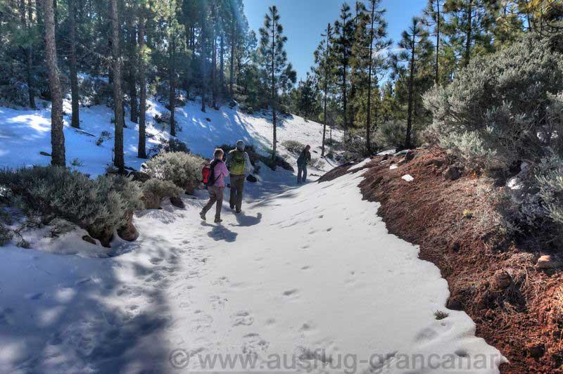 Wandertour im Winter, Gran Canaria mit Schnee