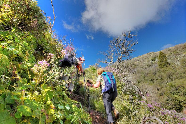 Steiler Aufstieg Barranco Mina