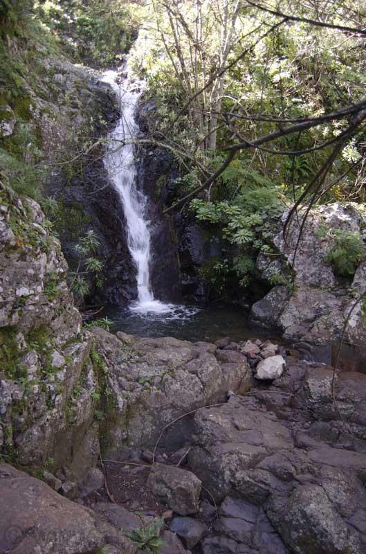 Wasserfall Mina, Gran Canaria