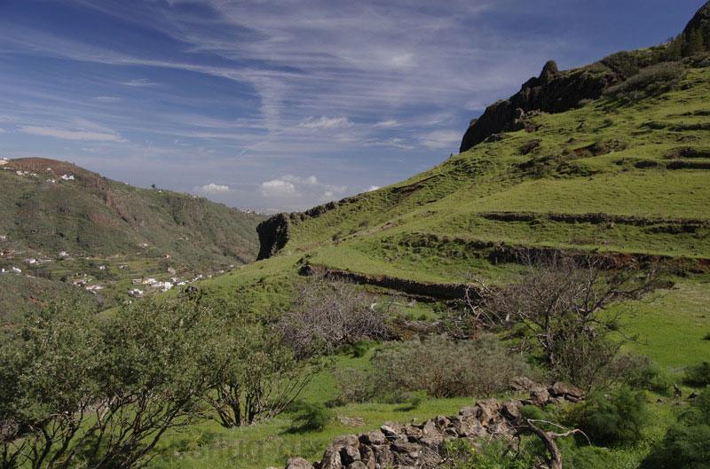 Grüne Wiesen im Nordosten von Gran Canaria