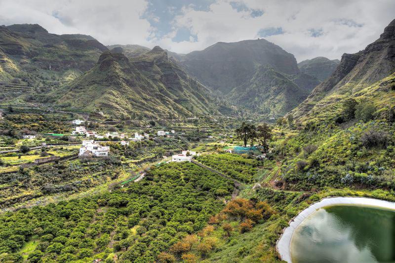 Finca mit Orangen und Wein im Tal von Agaete die man auf einem Ausflug besuchen kann.