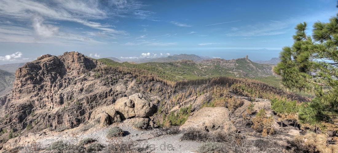 Brandschäden zwischen Pico de las Nieves und Campanario