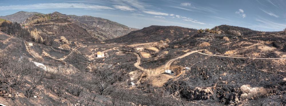 Bereich oberhalb vom Barranco de la Mino nach dem Brand auf Gran Canaria